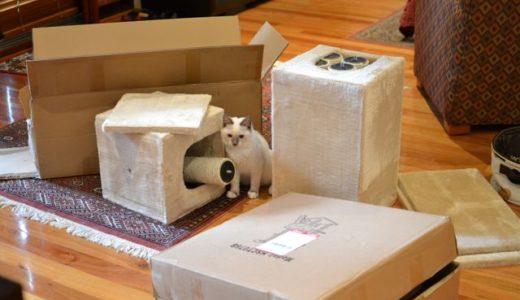 新しい猫タワーが来たよ!