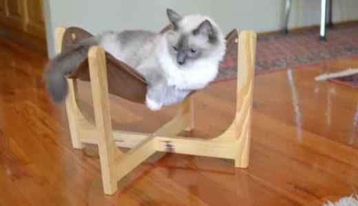 猫ハンモックは失敗だったかもしれない(涙)
