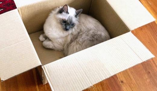 新しい箱には順番を守って入らなければならない。